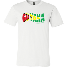 Guyana Flag Design