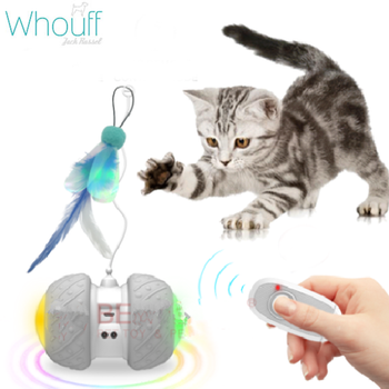 2.4G Feather Cat Toy with Remote Control