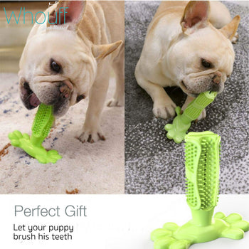 Soft Rubber Toothbrush Chew Toy