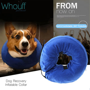Inflatable Collar For Injury Recovery