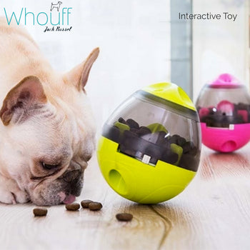 Interactive Treat Toy