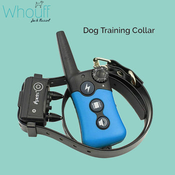 Dog Training Collar With Rechargeable and Waterproof Receiver