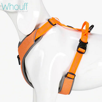 Safe and Durable Dog Harness