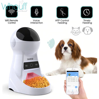 Pet Automatic Feeder With Voice Recording
