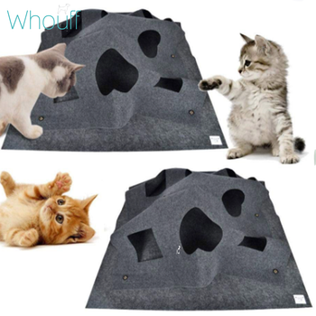 Cat Mat Hide And Seek