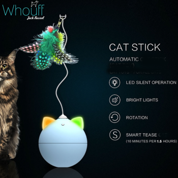 Automatic Teaser Cat Toy
