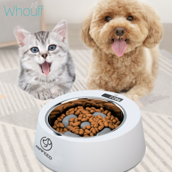 Smart Antibacterial pet Slow Feeder with Accurate Weighing