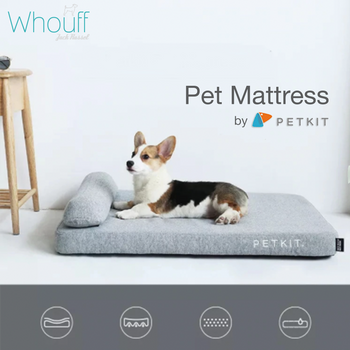 Memory foam Pet Mattress