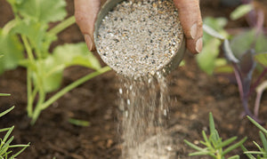 Fertilising Your Garden