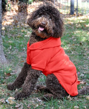 Flex-Fit Dog Hoodie - Red