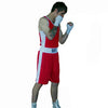 Ringsport boxing shorts and singlet