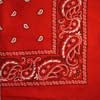 Red Cavalry Bandana