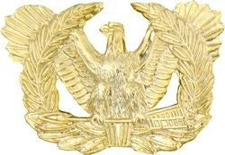 Warrant Officer Branch Insignia Eagle Rising Pin