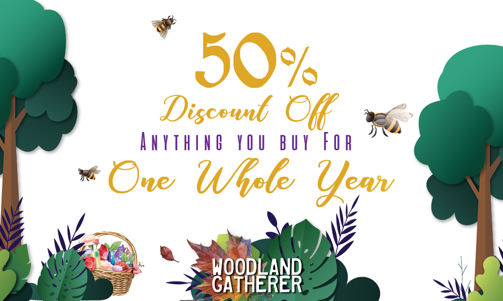 Woodland Gatherer's Biggest Giveaway Ever.  Win a whole year of 50% off anything you buy from the Woodland Gatherer's webshop www.woodland gatherer.com