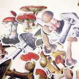 🍄Cute Mushroom Shape Stick Paper Scrapbooking Adhesive Stickers DIY🍄