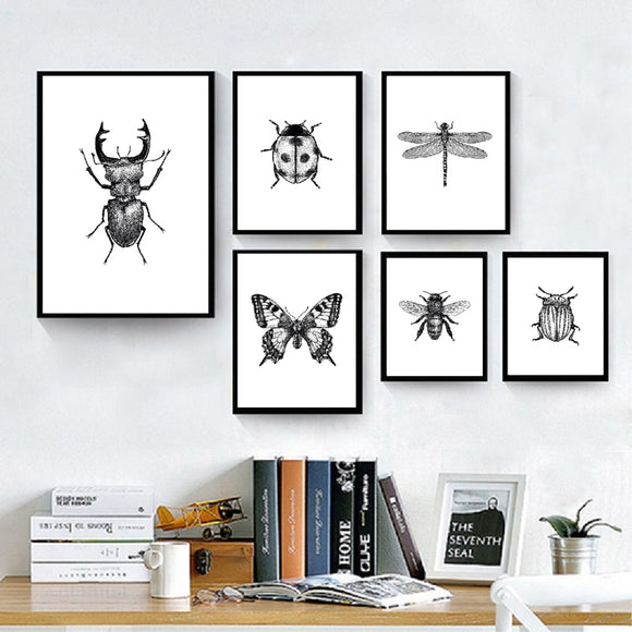 Woodland Animal Room Decor Canvas Wall Art Insects Bugs Illustrations Dragon Fly Bee Beetle Butterfly Black and White Home Decor | Woodland Gatherer | Australian Online Store | Gifts & Treasures | Special Occasions & Everyday Fun | Boho Life | Whimsical Treats | Jewellery | Fashion | Crafting DYI | Stationery | Boho Festival Fashion