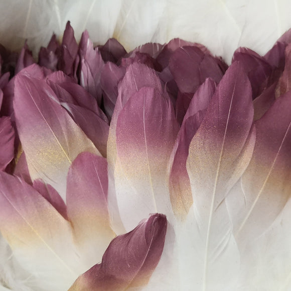 Ten Rose Gradient Goose Feathers | 15-20cm