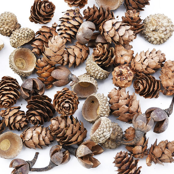 50PCS Lovely Little Pinecone & Acorns | Artificial Plants | DIY Decor