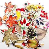 42 Watercolor Autumn Leaf Stickers