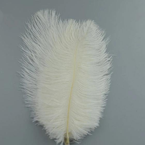 20pc Natural Feathers | Lots To Choose From | DIY Decor Craft - Woodland Gatherer