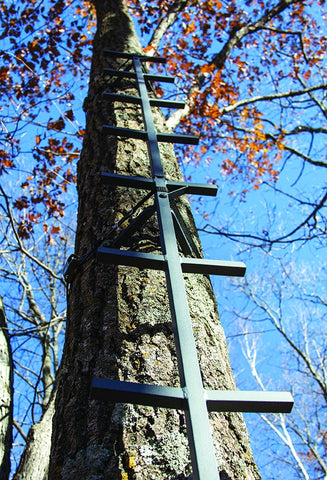 Tree Stand, Big Foot, 20 Ft, Connect N Climb