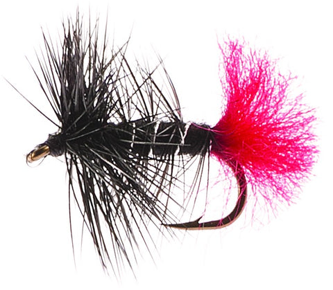 Dry Flies (Unsnelled) Black Zulu H12