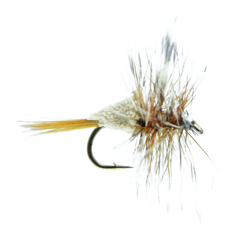 Flys-Irresistable Adams Sz-14