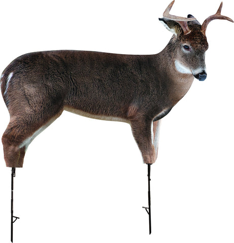Freshman Whitetail Buck Decoy