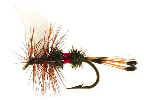 Dry Flies (Unsnelled) Royal Coachman H12
