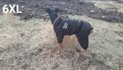 Dog wearing warm 6XL stylish waterproof jumpsuit for dogs