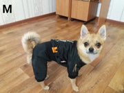 Chihuahua wearing warm waterproof  jacket for dogs