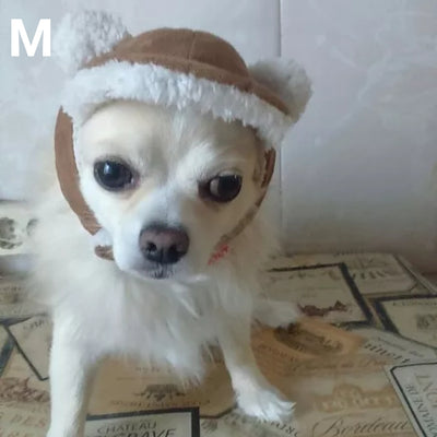 Dog wearing warm winter hat for dogs