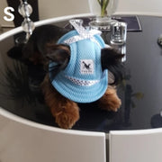 Dog wearing blue summer hat