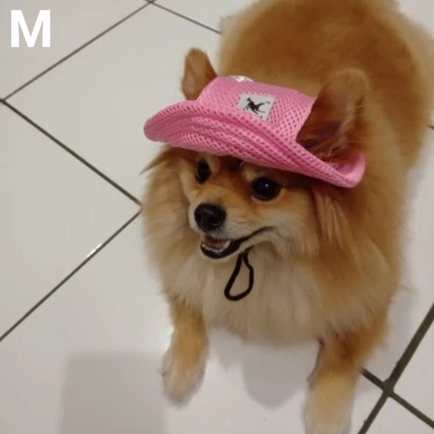 Pomeranian wearing cute pink summer hat