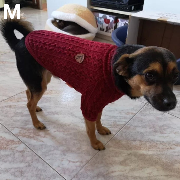dog is red classic wool sweater for dogs