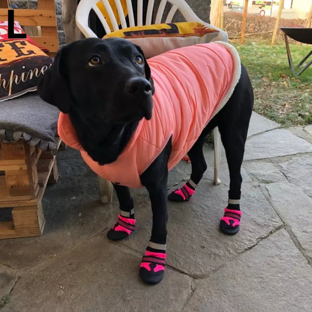 dog wearing pink waterproof shoes