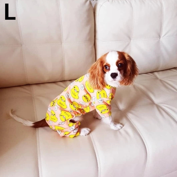 Dog wearing cute print pajamas for dogs
