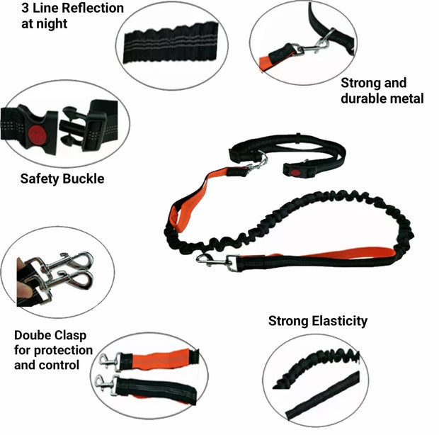 details of the features for handsfree jogging leash for dogs