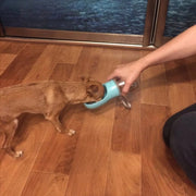 Dog drinking from blue leak proof travel water dispenser for dog