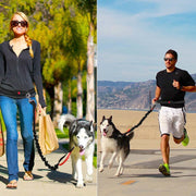 Woman and man with dog on handsfree jogging leash