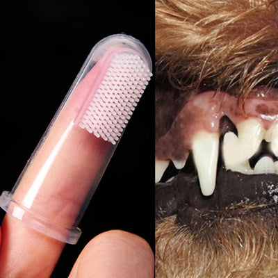 finger tooth brush for dogs
