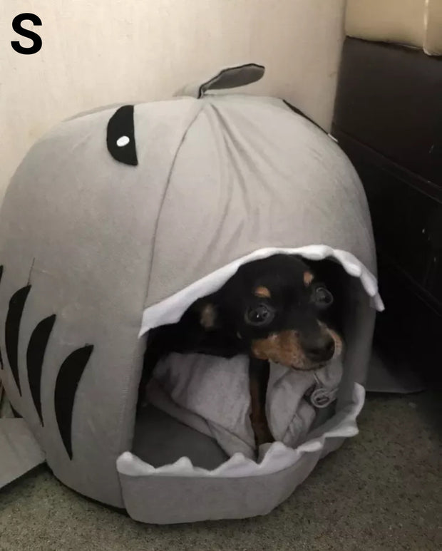 dog sitting in grey shark house bed for dogs