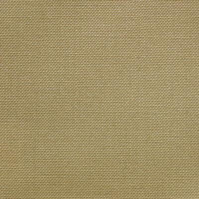 Dugdale Fine Worsted - Beige
