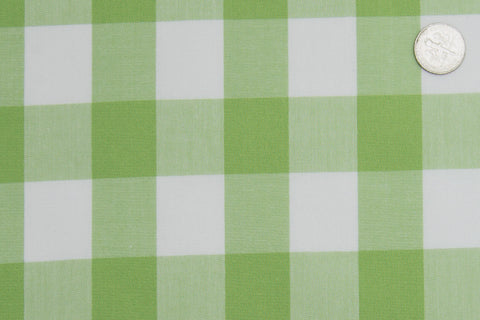 Light Apple Green Windowpane Checks
