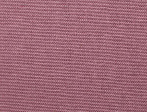 Brisbane Moss Salmon Pink Canvas