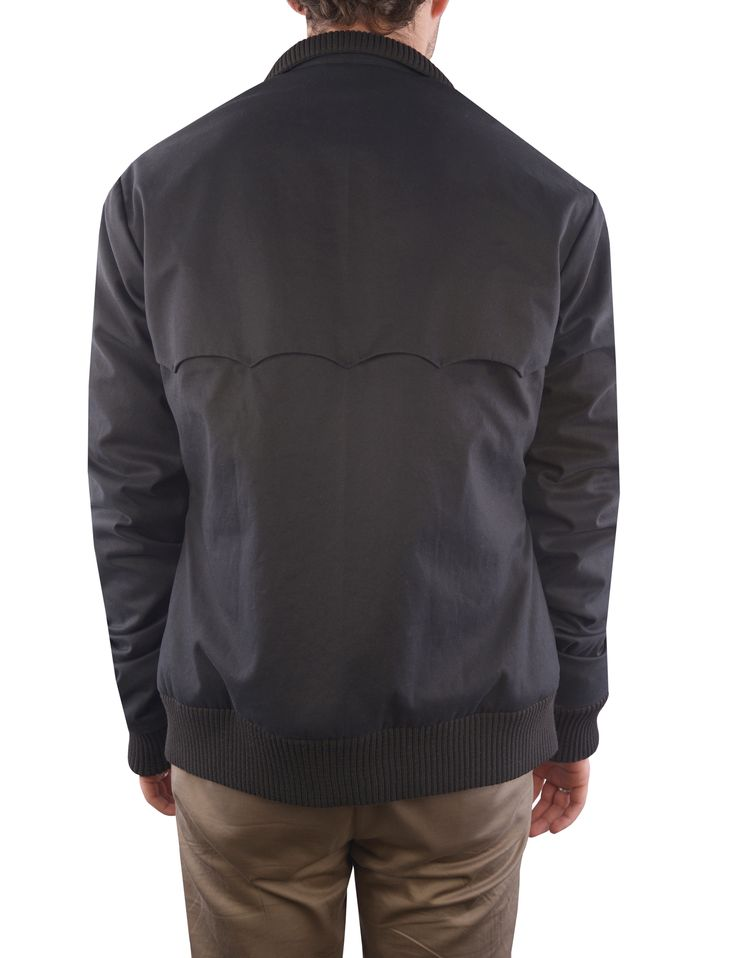 Luxire Harrington Jacket