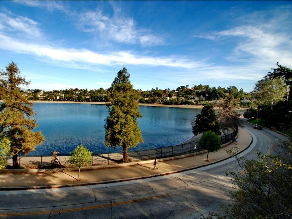Silver Lake Reservoir | VITAE Glass