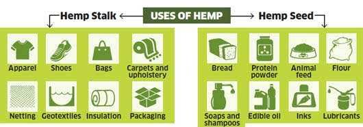 Uses of Hemp | VITAE Glass