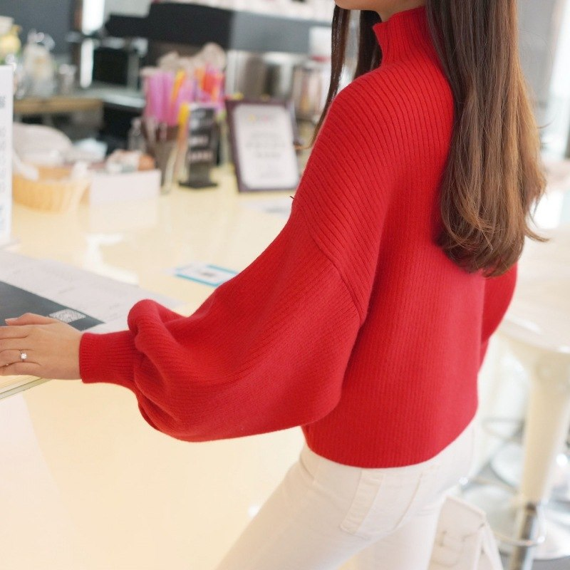 Autumn Winter Women Sweaters Fashion Turtleneck Batwing Sleeve Pullovers Loose Knitted Sweaters Female Jumper Tops