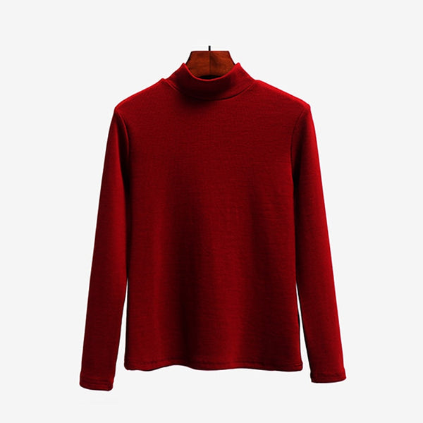 Autumn Winter Women Knitted Casual Sweater Pullovers Turtleneck Basic Slim Sweaters